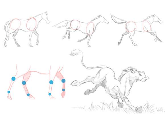 Копытные животные в движении