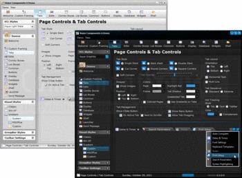 Пример пользовательский интерфейс, созданный с помощью Raize компоненты.